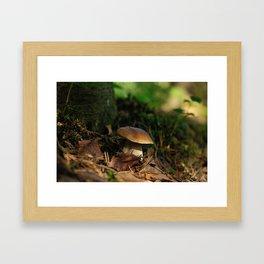 cepe mushroom Framed Art Print