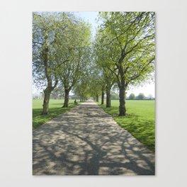 Avenue of Shade Canvas Print