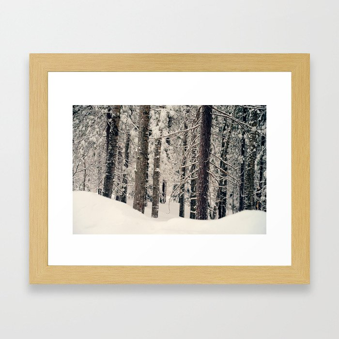 Winter Woods 1 Framed Art Print