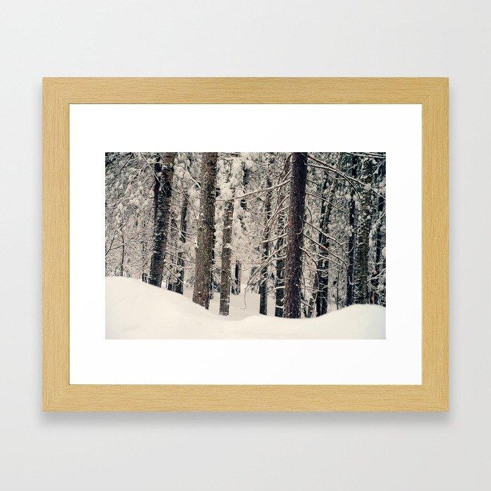 Winter Woods 1 Framed Art Print