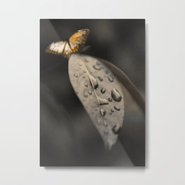 Leaf and butterfly #01 Metal Print