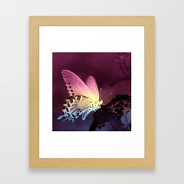 Swallowtail Gradient Framed Art Print