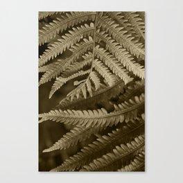 Copper Penny Ferns Glisten Canvas Print