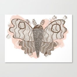 ghost moth Canvas Print