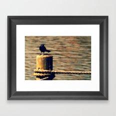 Black Bird 01 Framed Art Print
