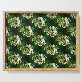 Hills-of-snow hydrangea pattern Serving Tray