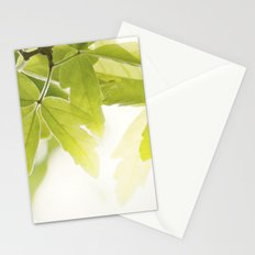 the Daily Sun Stationery Cards