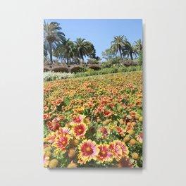 Flowerland in Spain Metal Print