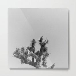 JOSHUA TREE XV (B+W) Metal Print