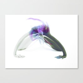 Bodies & Shapes III: Colors Canvas Print