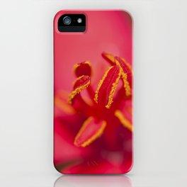 Stamens of a Jatropha Integerrima iPhone Case