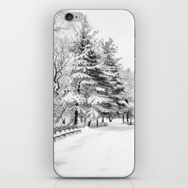 New York City Winter Trees in Snow iPhone Skin
