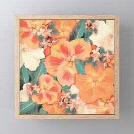 Aloha Orange Sherbet Framed Mini Art Print