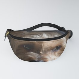 Lazy Kind of Day Fanny Pack