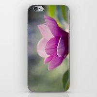 magnolia iPhone & iPod Skins featuring magnolia by Sharon Mau