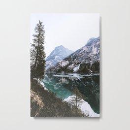 Woodland Wanderer Metal Print