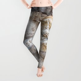 Petrified wood 3266 Leggings