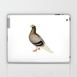 Le Pigeon Laptop & iPad Skin