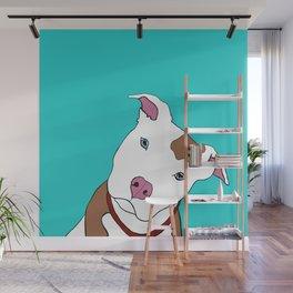 Pit bull Wall Mural