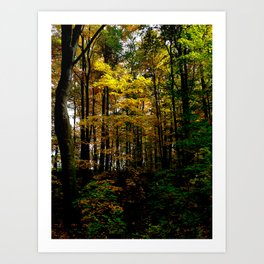 Autumn Yellow Art Print