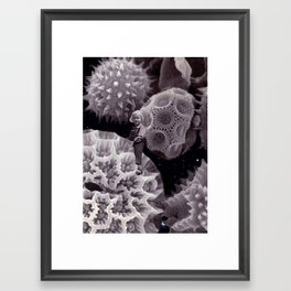 Tiny Universe Framed Art Print