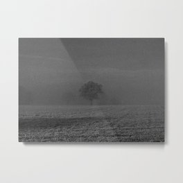Foggy tree Metal Print