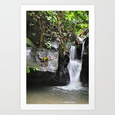 Waterfall in Trinidad Art Print