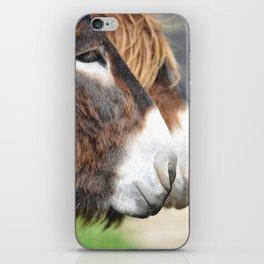 burros iPhone Skin
