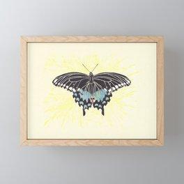 Small Spicebush Swallowtail Framed Mini Art Print