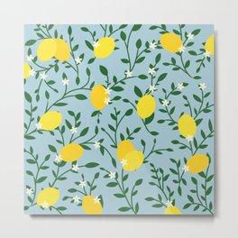 Meyer Lemons Metal Print