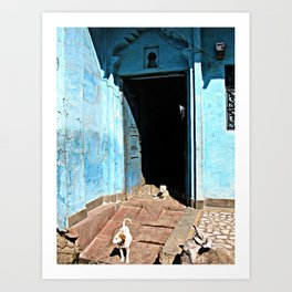 Indian Streets. Blue House and Dogs Art Print