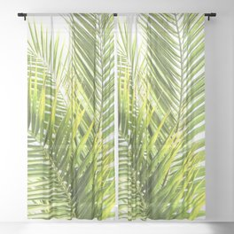 Palm leaves tropical illustration Sheer Curtain