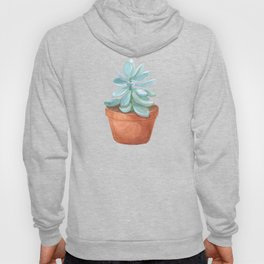 Succulent in the pot Hoody