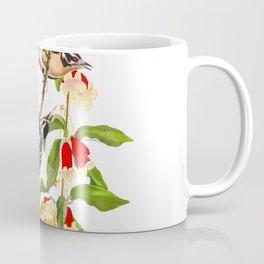 Downy Woodpecker John James Audubon Birds of America Scientific Illustration Coffee Mug