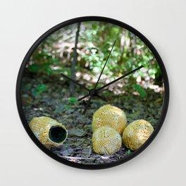Maclura Pomifera - Osage Orange Wall Clock