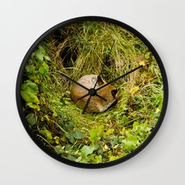 Mr Fox's afternoon nap Wall Clock