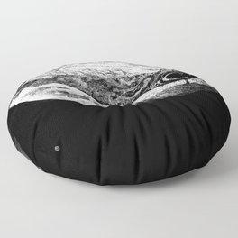 Jupiter & 3 Minions Floor Pillow