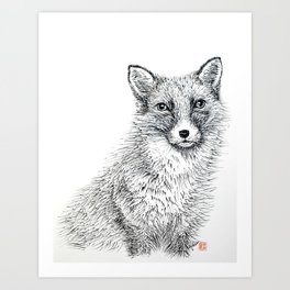 Fox staring Art Print
