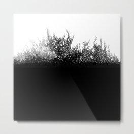 black & white 02 Metal Print