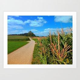 Besides the cornfields   landscape photography Art Print