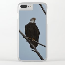 Spring Eagle Clear iPhone Case