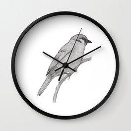 A Bird named Johan Wall Clock