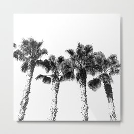 Tropical Palm Tree Photography {2 of 2} | Black and White Metal Print