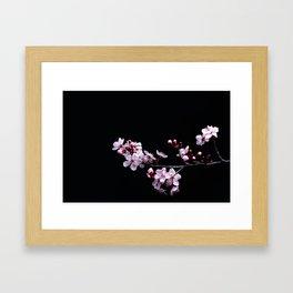 Flower Photography by David Brooke Martin Framed Art Print