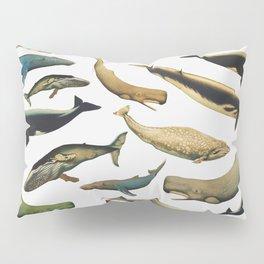 Color Whales Pillow Sham