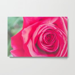 Flower Photography by Jessica Lewis Metal Print