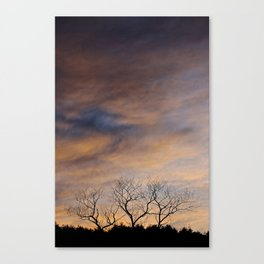 Three Canvas Print