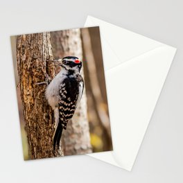 Woodie Stationery Cards