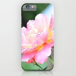 Pink Gold Rose iPhone Case