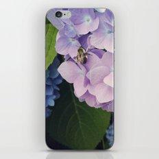 Hydrangea & Bee iPhone & iPod Skin